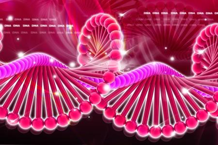 nucleotides: ADN en dise�o digital