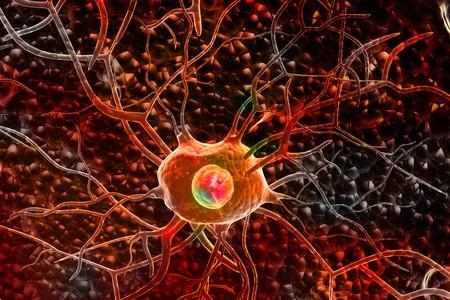 3d Nerve cells  photo