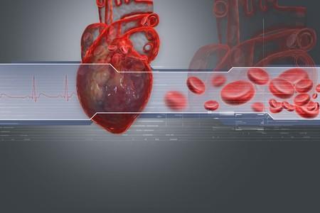 blue vessels: Human heart