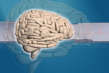 Brain background  photo