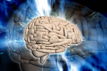 Brain in digital background Stock Photo - 8067855