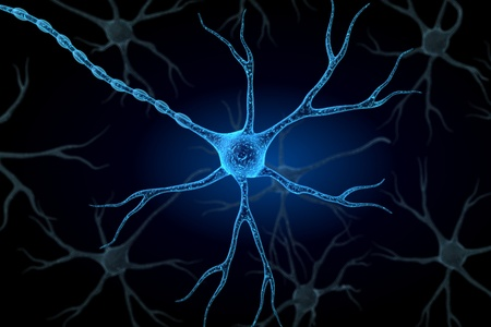 Neuron in isolated background   Stock Photo