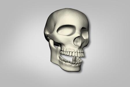 horrific: Human skull in isolated background