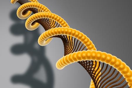 nucleotides: ADN   Foto de archivo