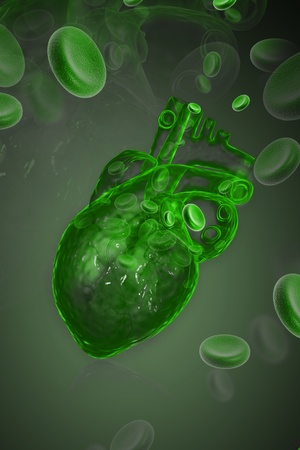 Human heart with blood cell Stock Photo - 8947986