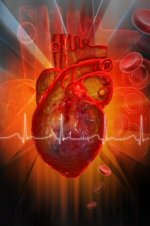 ECG: Human heart with ECG