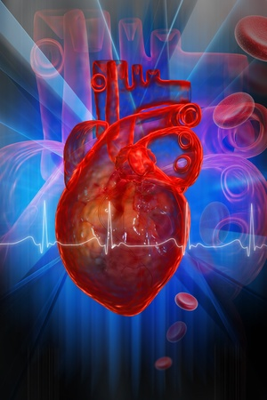 heart beat: Human heart with ECG