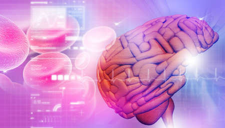 Brain in abstract background  photo