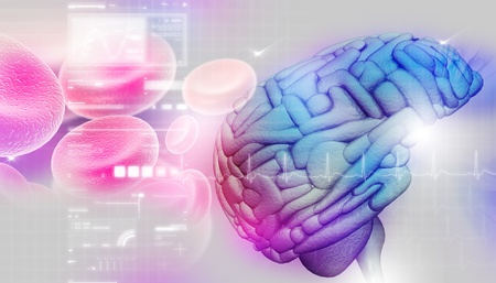 Brain in abstract background Stock Photo - 8948045
