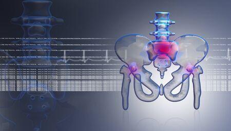 chest x ray: 3D anca in digital design Archivio Fotografico