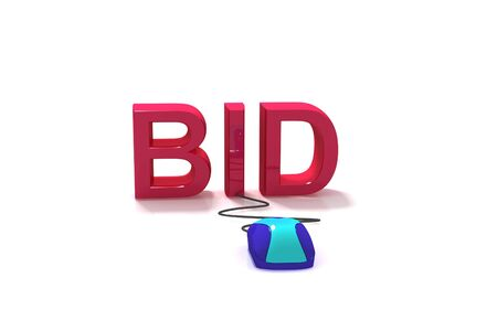 e auction: Bid in Internet