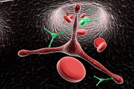 blood cells with virus Stock Photo - 10120857