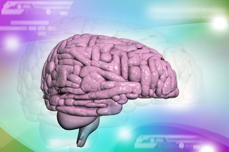 cerebra: Brain background