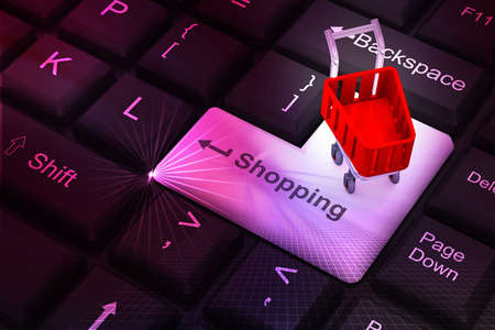 three dimensional accessibility: Internet shopping