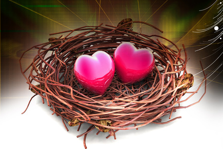 calibration: Two love hearts in being protected in a nest. Conceptual design