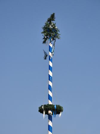 Bavarian may pole
