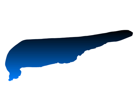 Map of Schiermonnikoog Stock Illustratie