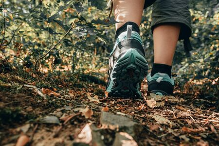 Muddy boots of hiker on forest trail. Traveler feet are stepping on the ground with fallen leaves. Close up of the sole of dirty shoes. Adventure and hiking concept outdoor. Hipster lifestyle 版權商用圖片