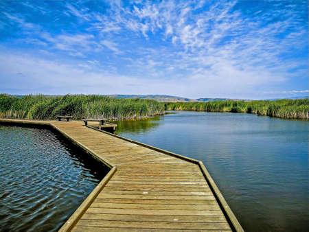 regional: Paseo mar�timo sobre el agua y las ca�as en Coyote Hills Regional Park, East Bay, California