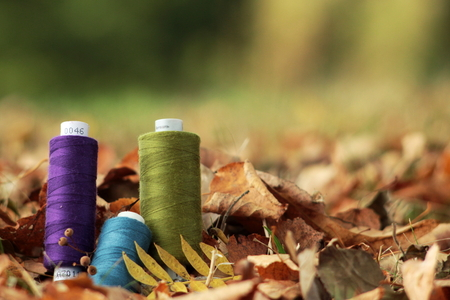 thread spools arranged in autumn leaves - background blanked out blurry