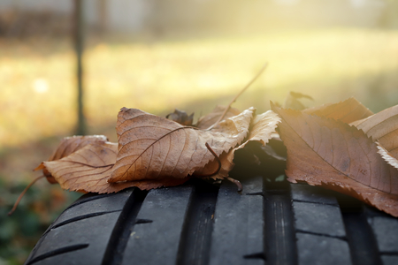closeup view on tread of high performance car tire with autumn leaves in bright sunny light- car tuning and maintenance concept - copy space for text in blurry areas