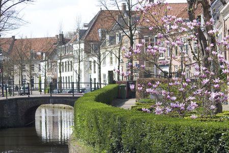 old dutch street Reklamní fotografie