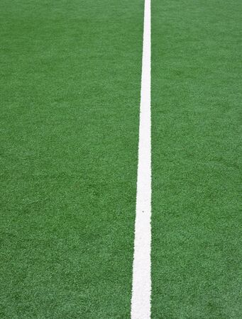 lines on a hockey field photo