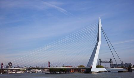 rotterdam: erasmus bridge in the centrer of rotterdam