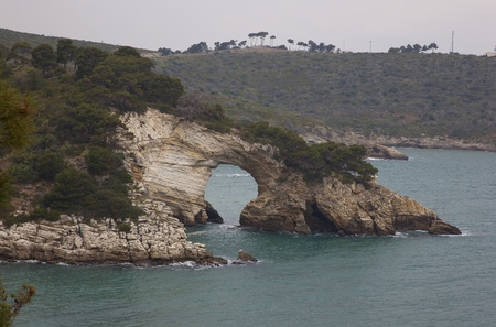 deatil: deatil of the coast of south italy