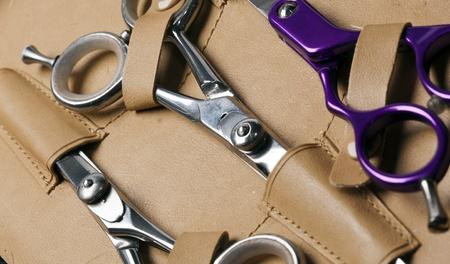 Nůžky profesionální vlasové stylistky Reklamní fotografie