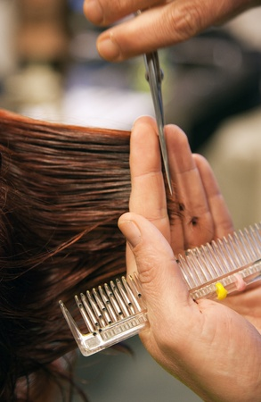 beauty saloon: hairdresser cutting  hair