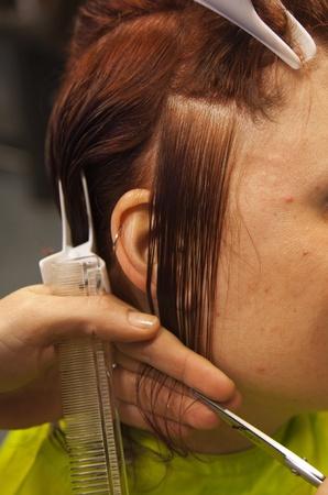 hairdresser cutting  hair photo