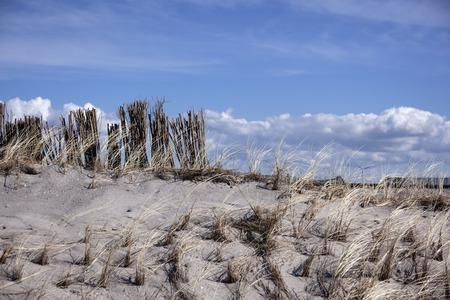 dutch dunes with blue sky