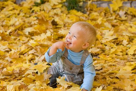 Photo of smiling child sitting in yellow autumn maple leaves photo