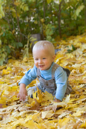 Photo of smiling child playing in yellow autumn maple leaves photo