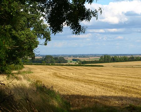 harvests: Lincolnshire fields in September Stock Photo