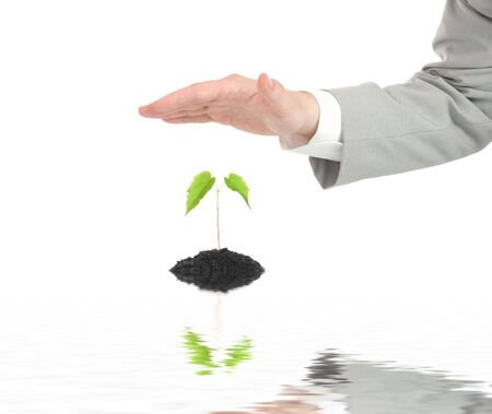 earth handful: Businessman hand protecting green plant