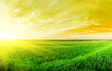 Sunset in the summer in countryside Stock Photo - 9646904