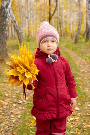 Little girl with yellow leaves in autumn forest photo