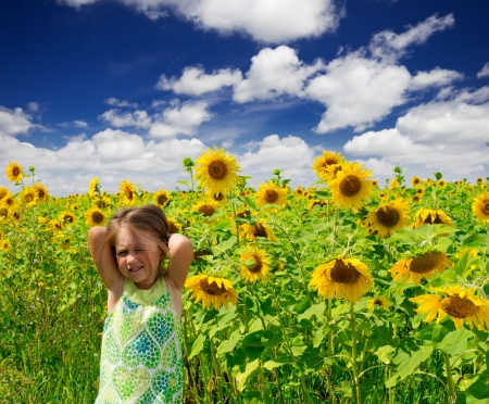 Little girl on sunflowers field photo