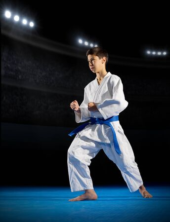 rostrum: Boy martial arts fighter in sports hall