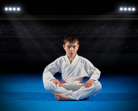 Little boy martial arts fighter in sports hall Stock Photo