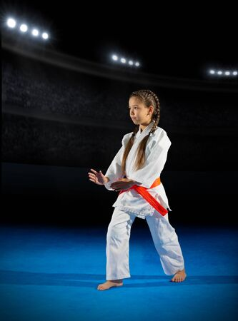Little girl martial arts fighter in sports hall Stock Photo