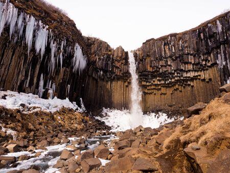 frigid: Svartifoss Waterfall Iceland