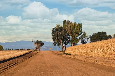 county side: Rural county road with cornfields on the side and mountains in the far distance.