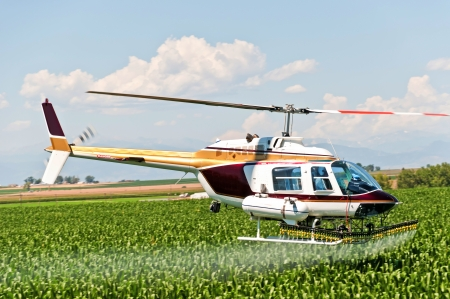 Crop duster helicopter spraying pesticide on a cornfield in central Colorado with the Rocky Mountains in the background.