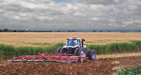 A farmer uses a disc harrow to roll corn stubble back into the soil for nutrients for next season. Stok Fotoğraf - 83924583