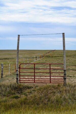 Metal gate between two tall post to enter the horse pasture
