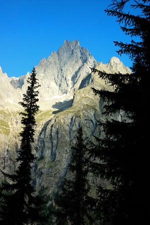 noire: Aiguille Noire (Mont Blanc) rocky peak, in foreground pine forest, sunny day; summer season.