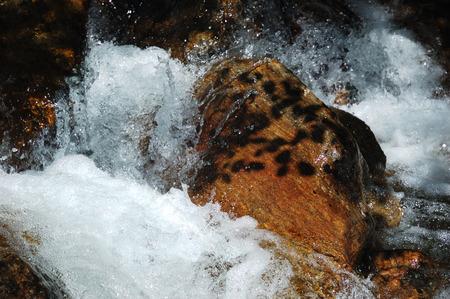 peacefull: Rocks of mountain river, summer season, vertical, sunny day